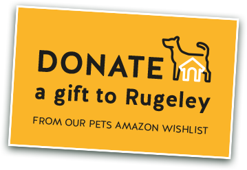 Donate a gift to Rugeley from out Pets Amazon wishlist